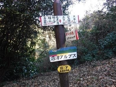 DSCF0981.JPG