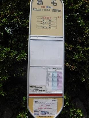DSCF4321-1.JPG