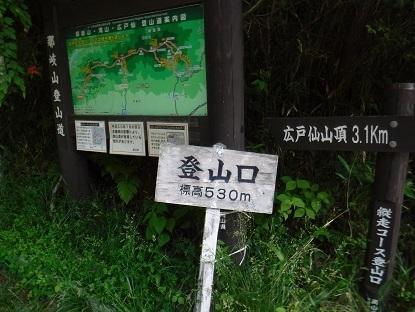 DSCF4474.JPG